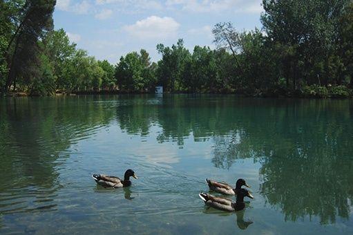 El Lago Anna y Gorgo de la escalera