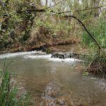 La Ruta de los Molinos del Agua